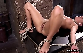 Busty babe gets pussy shaved and vibed
